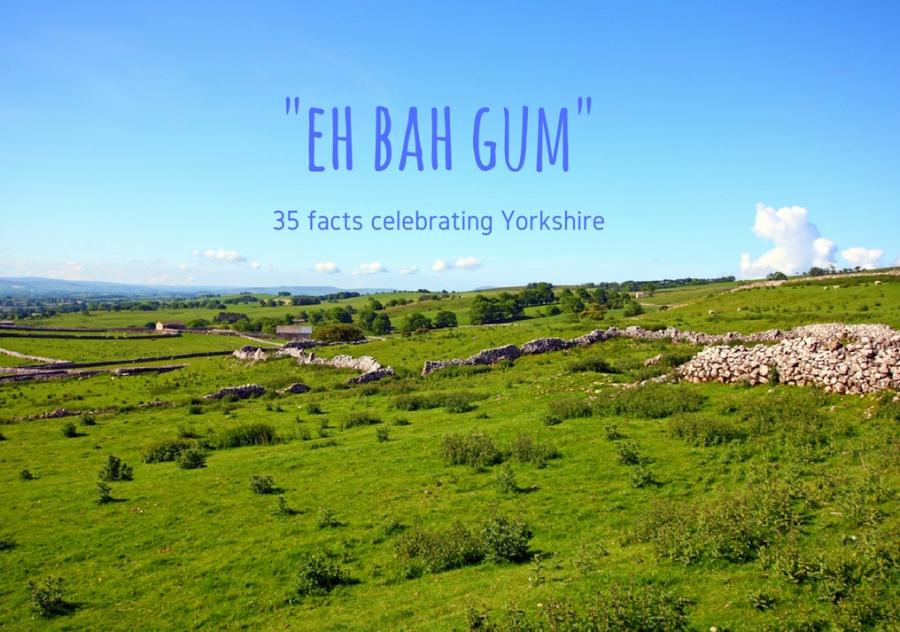 35 stereotype-quelling Yorkshire facts to digest over a brew and a slice of Parkin