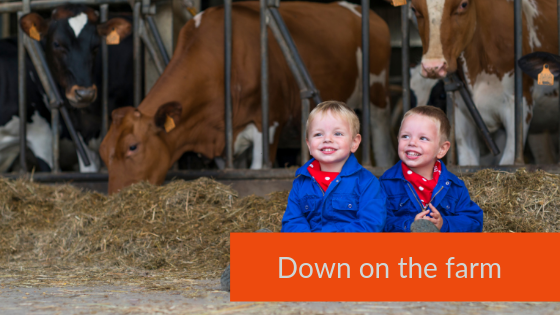 Working farm stays the kids will love for your next uk family holidays