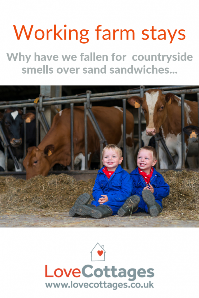Farm stays are a popular niche of the holiday rental sector in the UK these days - who knew how well it'd take off! They've proven to be a successful diversification option for farmers as well as an attractive prospect for holidaymakers. Working farm stays particularly pique the interest of UK family holidays.