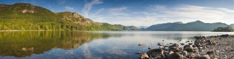 Summer woodland at Derwent Water with dramatic Latrigg mountain backdrop in the beautiful English Lake District.