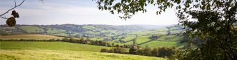 lush-green-countryside-wiltshire