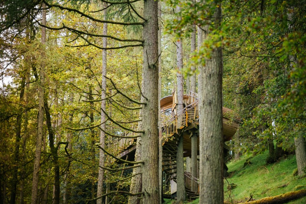 Treehouses are perfect for off-grid holidays